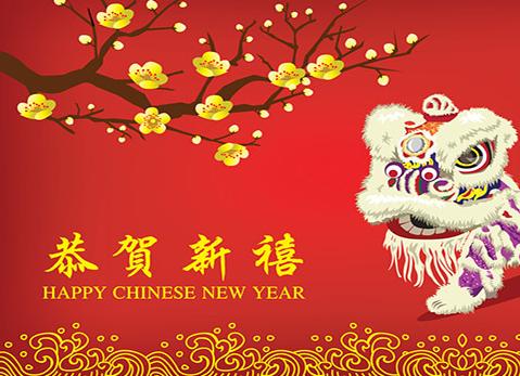 chinese new year celebration - 2018 Chinese New Year